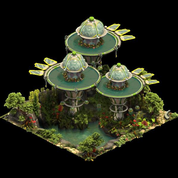 Проект «Дождевой лес»