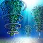 Подводное сельское хозяйство