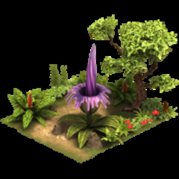 Растение Титан арум