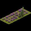 Лавандовая лужайка